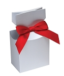 Folding Carton, CLOSEOUT, Pleated Top Gift Box, Metallic Silver, QTY/CASE-50