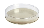 Clear Plastic Packaging, Round, Gold Base, 7 x 1-1/8, 16 oz., QTY/CASE-50