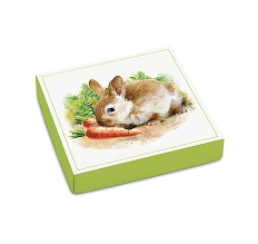 Easter Garden, Decorative Gift Box, 5-1/2 x 5-1/2 x 1-1/8